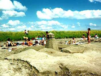 Sand Castles at Clam Harbour